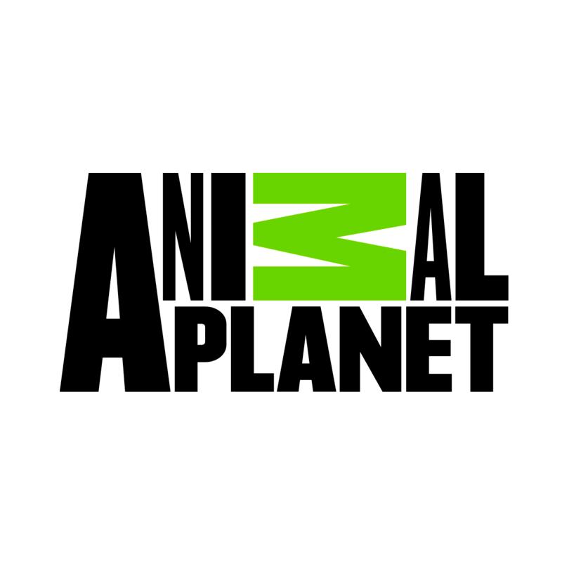 El canal animal planet retoma su elefante en su nuevo rediseño de ... e8886c58f