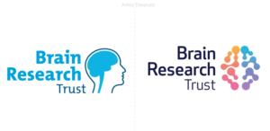 Identidad de Brain Research Trust: investigación de enfermedades y afecciones neurológicas