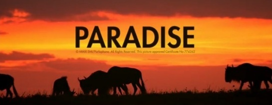 coldplay-paradise-2